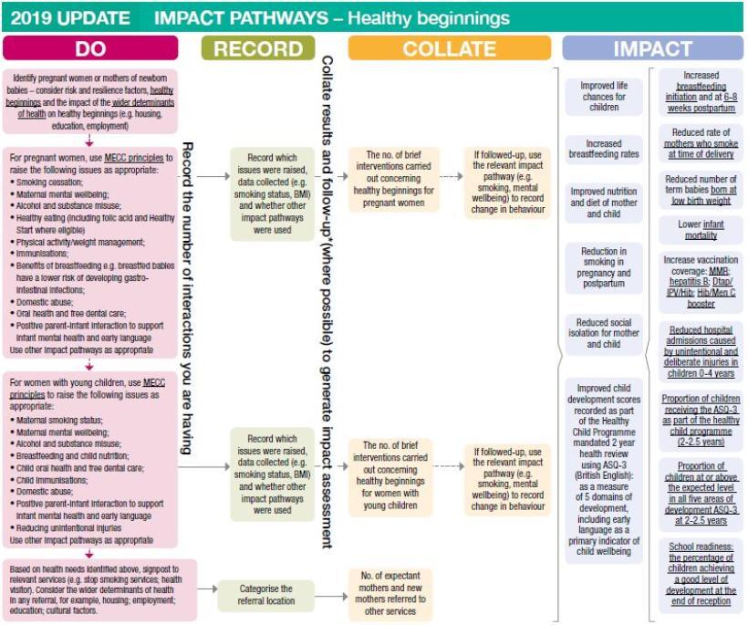 Impact pathways healthy beginnings